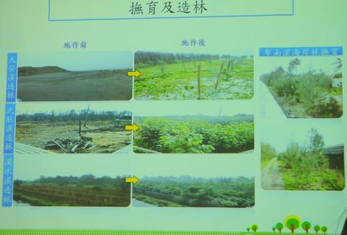 林務局進行植生復育,是「綠覆蓋」