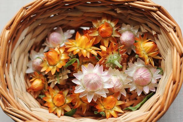 Flores de papel recien cortadas