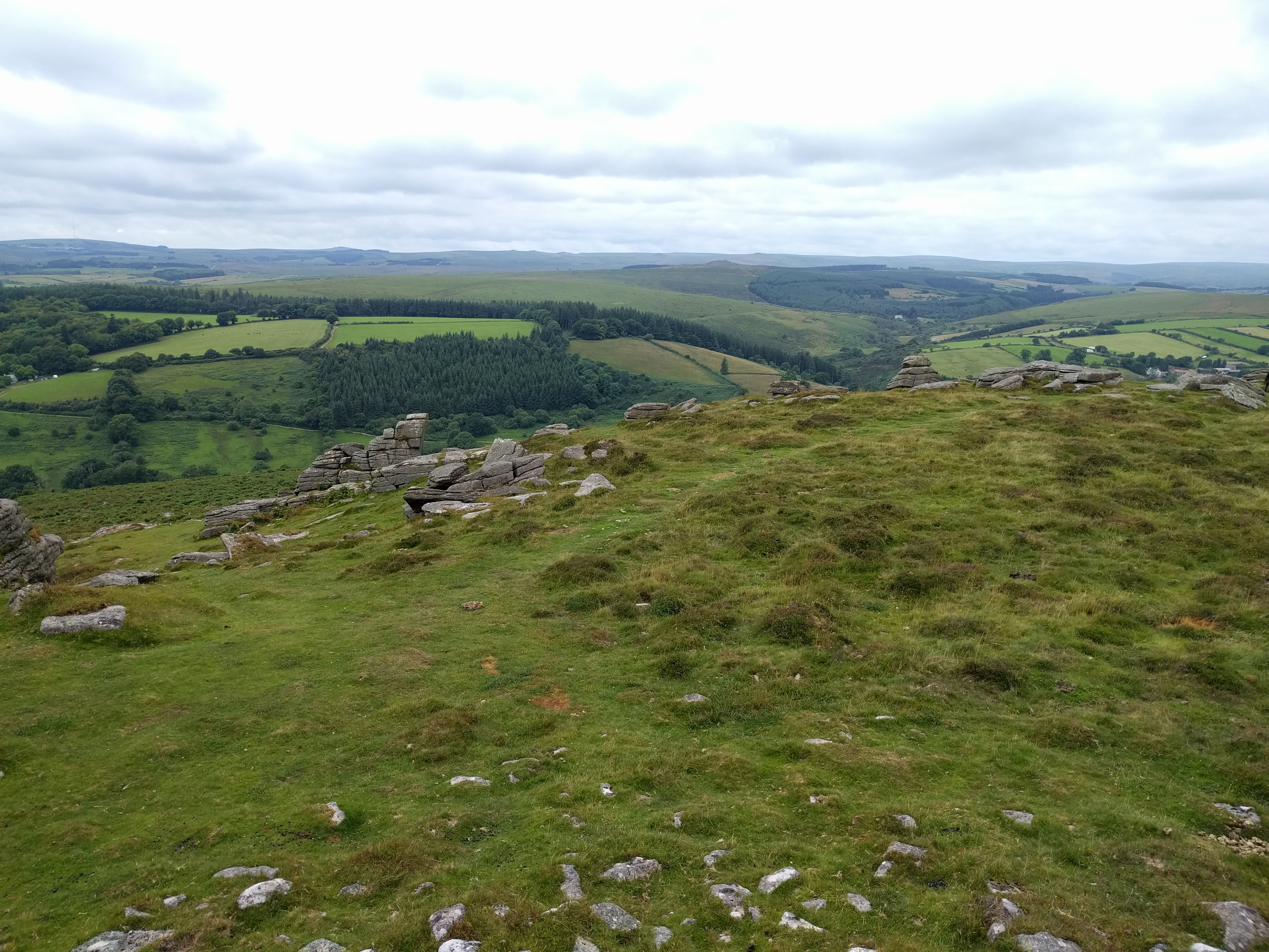 Yar Tor #dartmoor #sh
