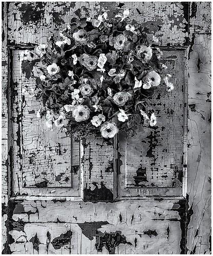 Flowers On Old Door Merrifield Garden Center Fairfax Va Flickr