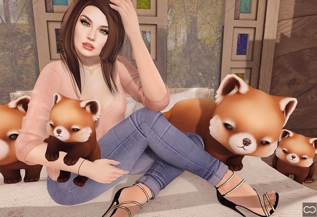Give Me Some Pandas