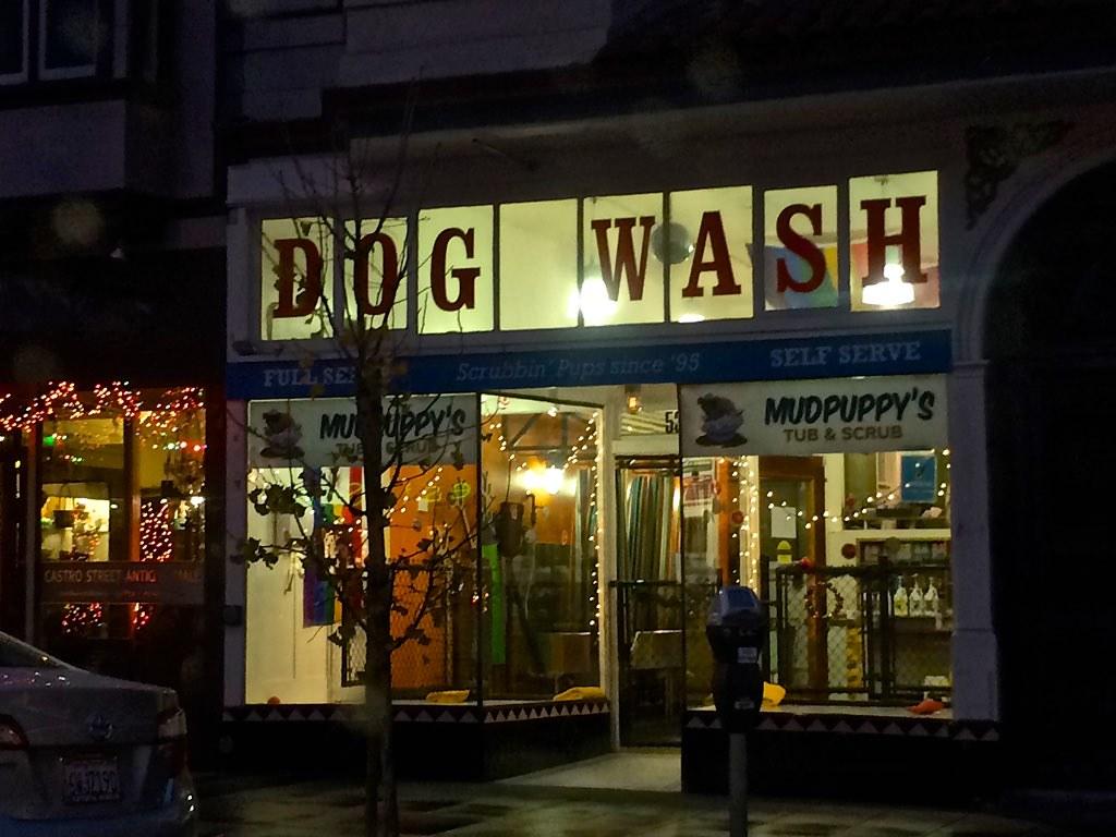 Free Dog Wash Warrnambool