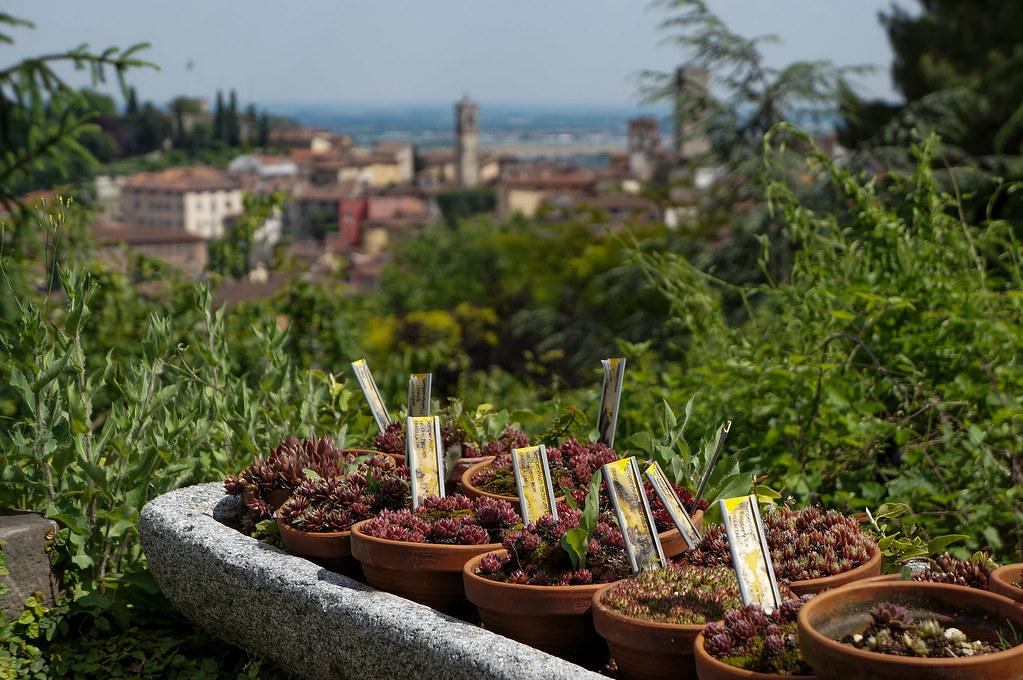 Bergamo Botanical Garden