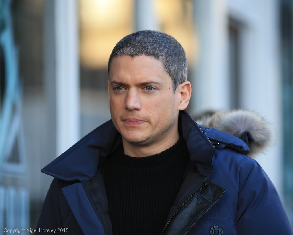 Wentworth Miller, The ...