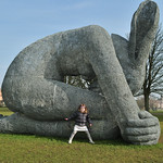 Giant Rabbit 1