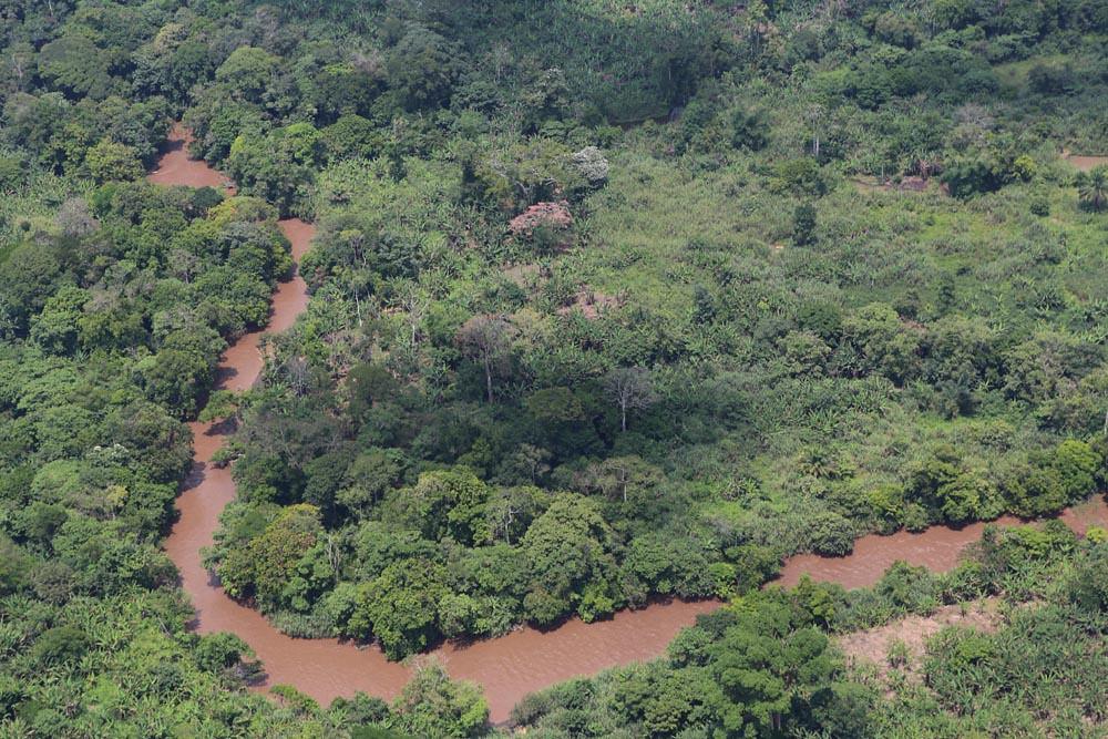 剛果雨林及河流空拍圖。圖片來源:MONUSCO Photos((CC BY-SA 2.0))