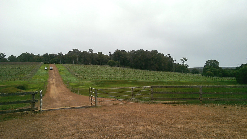 Western Australia's Margaret River area wineries