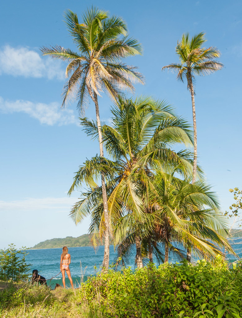 ... bocas del toro beach hotel tierra verde landscape | by Bocas Del Toro  Travel - Bocas Del Toro Beach Hotel Tierra Verde Landscape Surf Che… Flickr