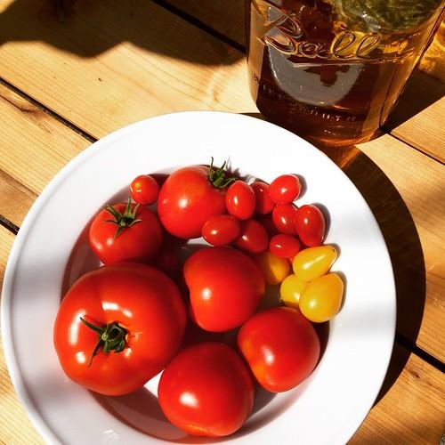 garden tomatoes & sun tea #grewitmyself