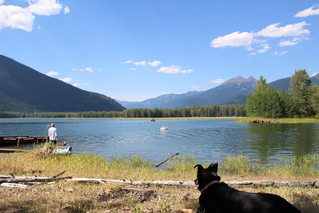 Ross Lake 2015
