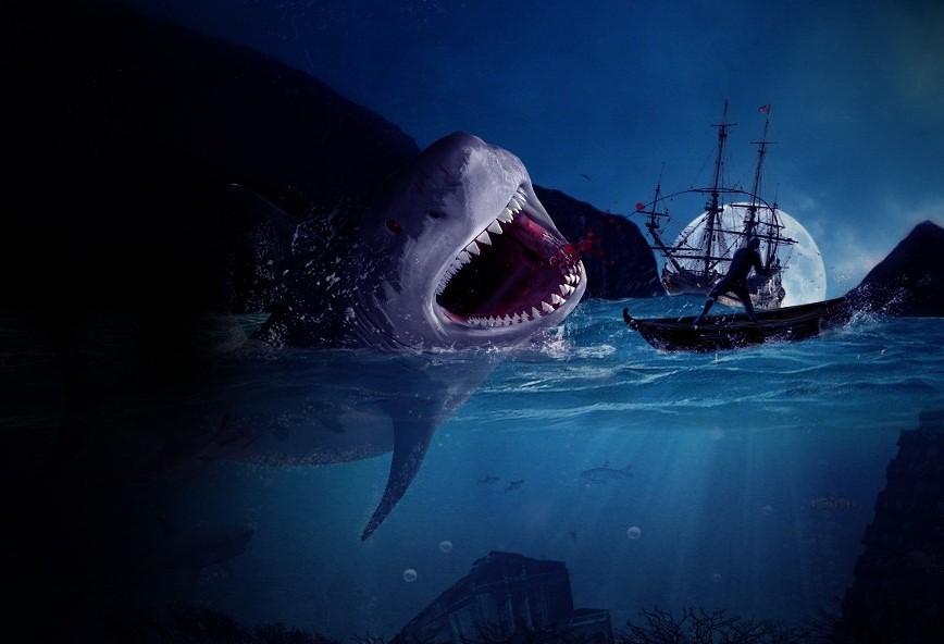Nice Fishing Lol Fish Ship Moon Shark Arnis Gashi Flickr