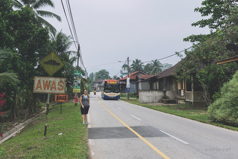 Sungai Lembing, Pahang - bus