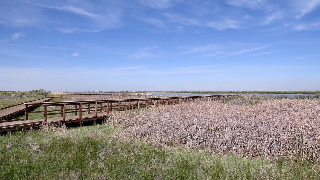 Foxtail Lake Stillwater National Wildlife Refuge Lahonta