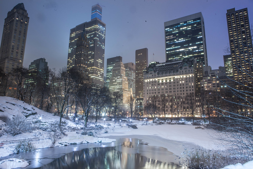 blizzard of 2015 in central park new york city i uploaded flickr. Black Bedroom Furniture Sets. Home Design Ideas