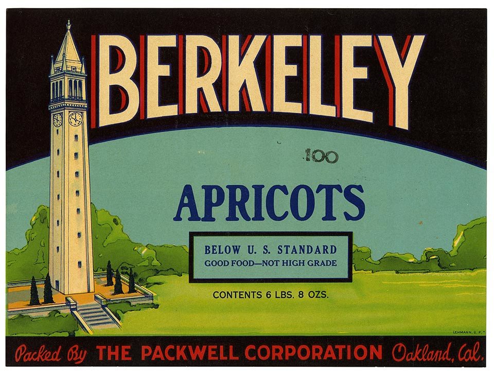 Apricots label, Berkeley brand, Lehmann Printing and Lithographing Co. | by California Historical Society Digital Collection