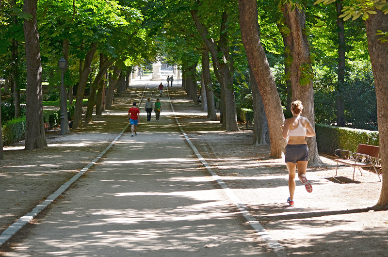 Shaded avenue, Park de El Retiro, Madrid