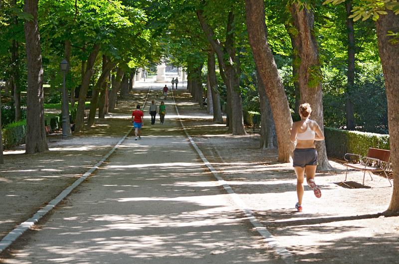 Shaded avenue, Park de El Retiro, Madrid