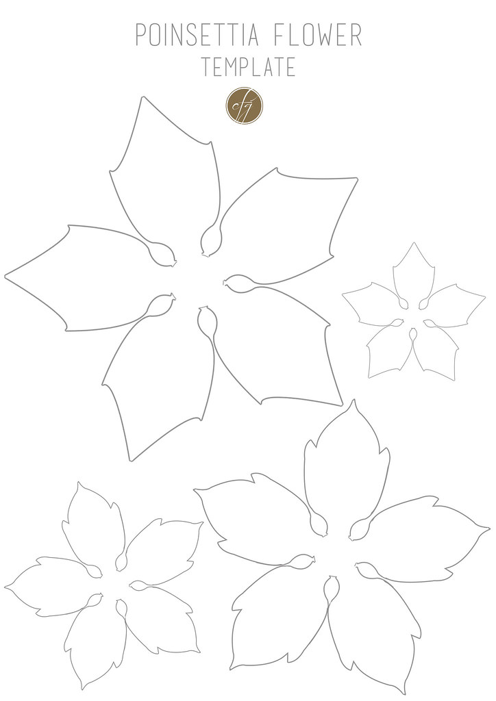 Eloquent image inside printable poinsettia template