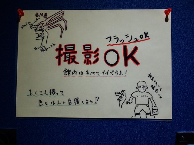 160810_takeshima_aquarium-2
