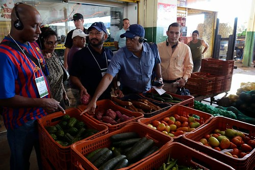 U.S. Department of Agriculture (USDA) Agricultural Marketing Service (AMS) Fruit and Vegetable Programs Market News Chief of the International Reports Section Dr. Luis Palmer (second from right with blue shirt) touring the market with MIOA members. Photo by Francisco Stuckert, CONAB