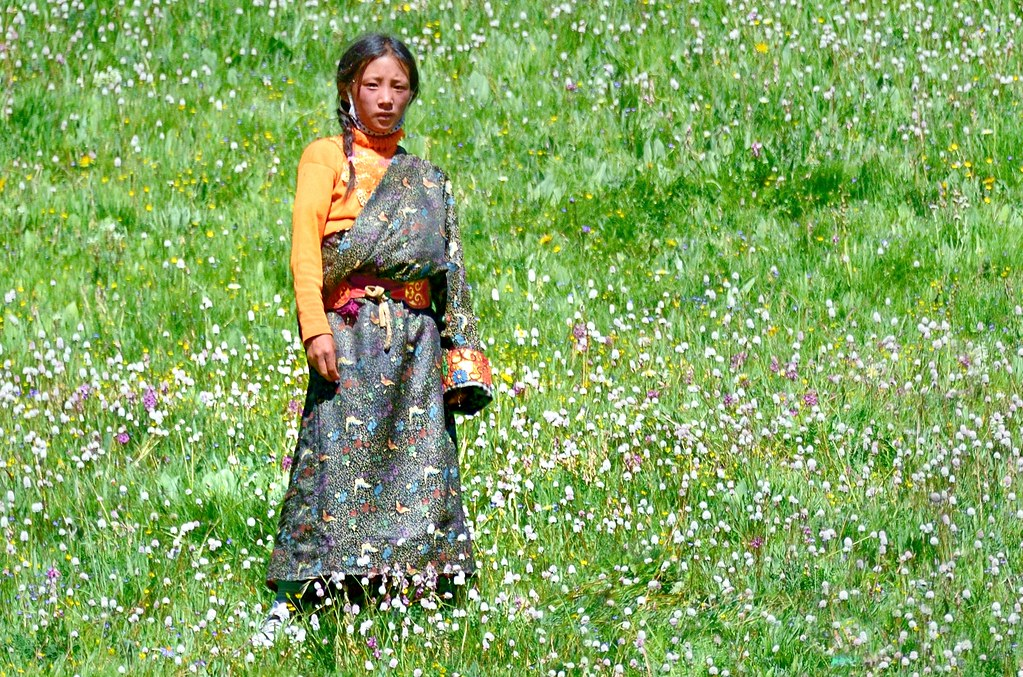 Dressed in a butterfly print standing in a bed of flowers tibet 2014