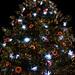 Grand Sapin de Noël sur la Place Kléber
