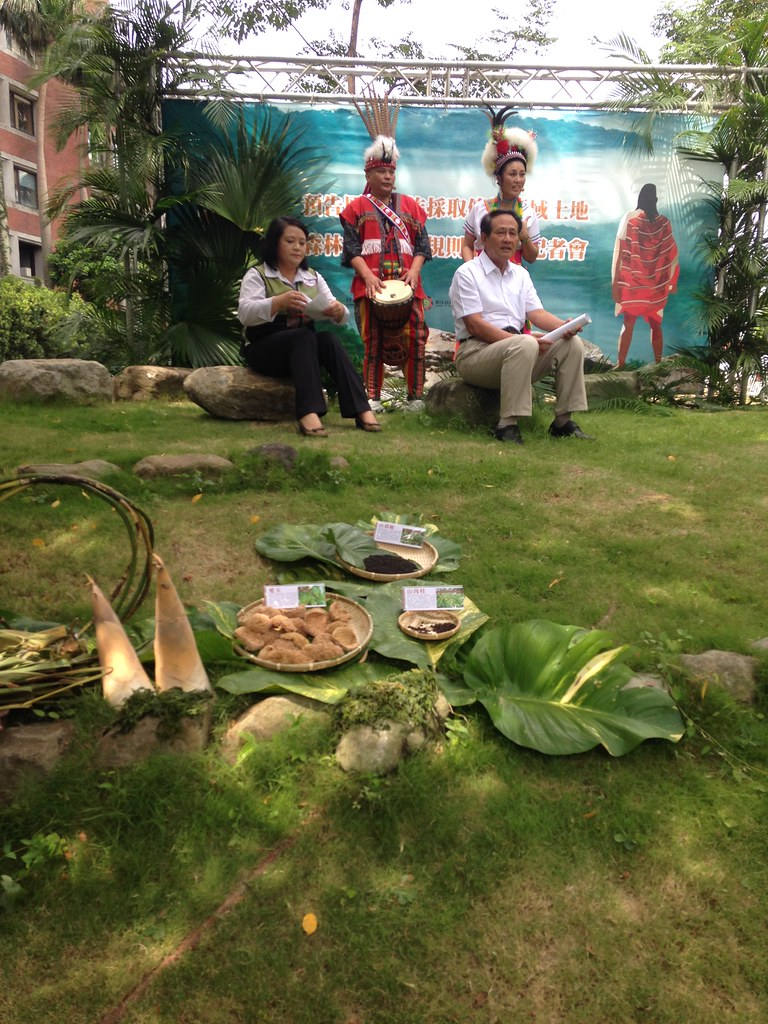 馬告、愛玉、山胡椒這些台灣森林中的原生植物,原住民族歷經千百年,已發展一套精彩絕妙的利用方式。攝影:廖靜蕙