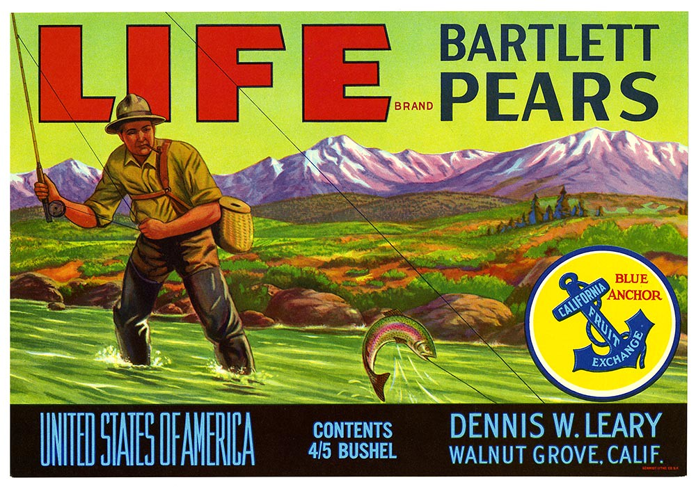 Bartlett pears crate label, Life Brand, Schmidt Litho. Co. | by California Historical Society Digital Collection