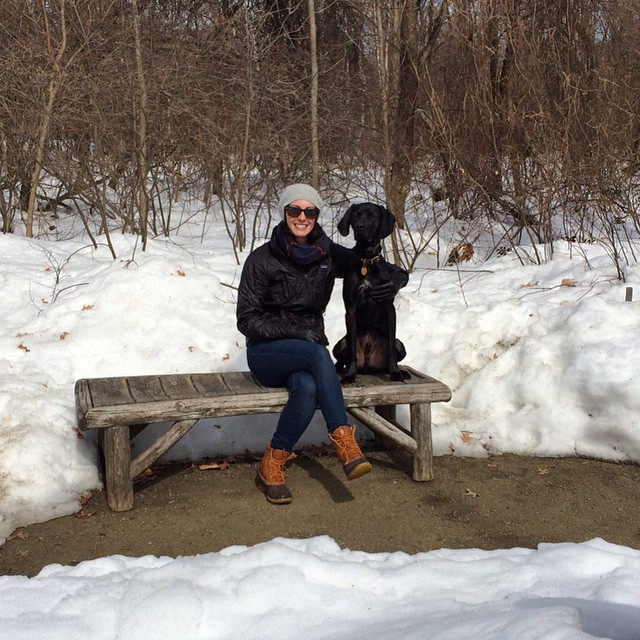Sunny Fresh Pond adventure with my favorite pup today. #FreshPond #Huckleberry #dogsofinstagram