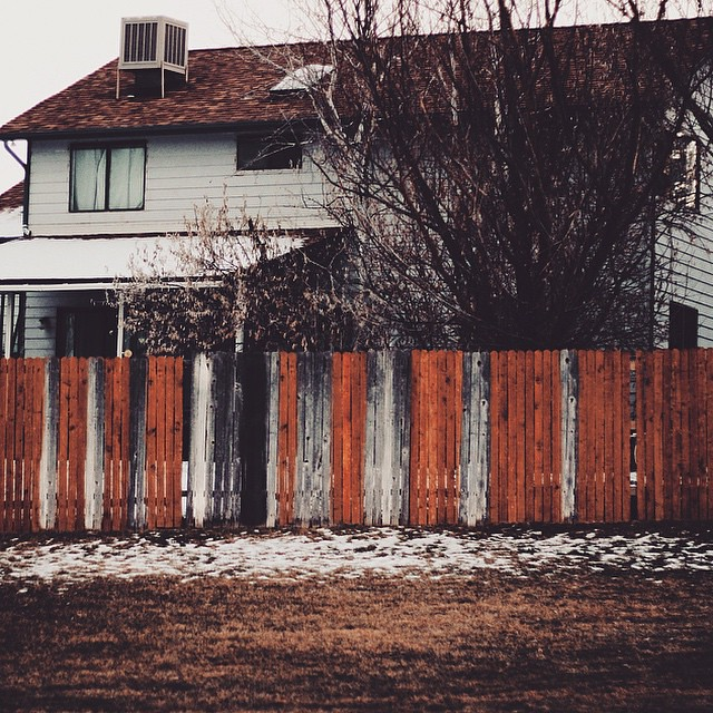 A World Without Racism The Of Fences Where Each Stake Does Not Question