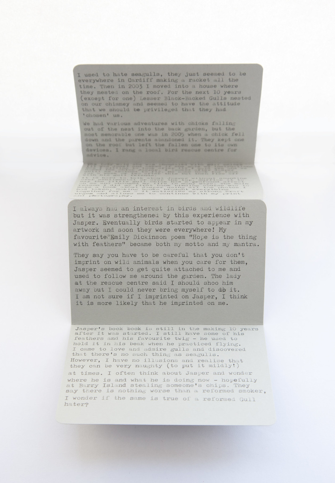 There's No Such Thing As Seagulls- Artists Book