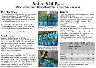 201503_stmia_poster | by Asian Turfgrass Center