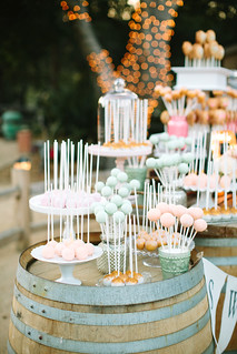 Holman Ranch Rustic Chic Dessert Display | by Sweet Lauren Cakes
