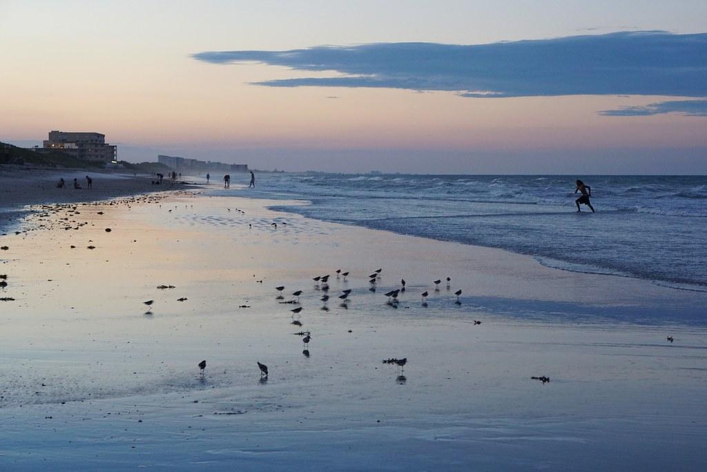 Florida Satellite Beach Police Battery Victim Affidavit