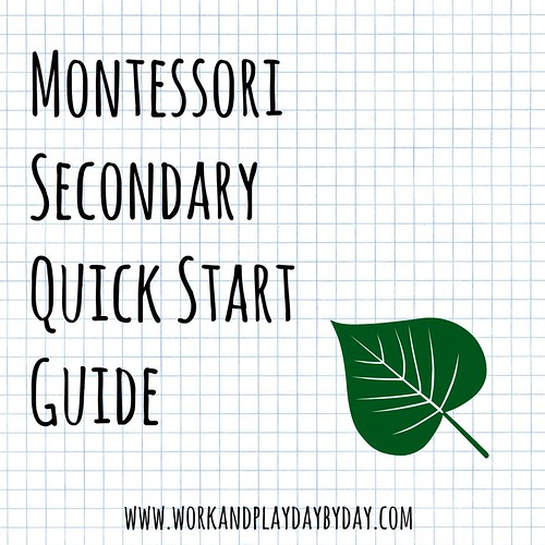 Montessori Secondary Quick Start Guide