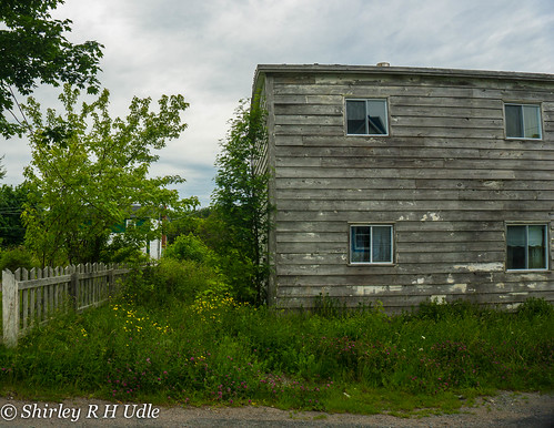 Old house with wild flowers brigus nl shirley udle flickr for Classic house nl