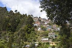 El 10.7% de los hogares bogotanos no tiene seguridad jurídica de la vivienda que habitan