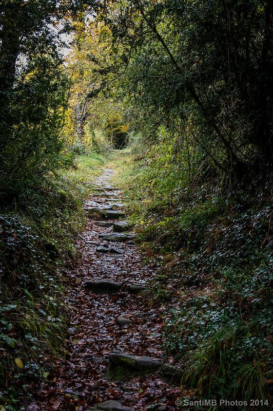 Subiendo por el SL-NA 65, el antiguo sendero a Irati