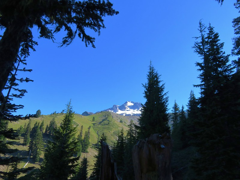 Mt. Hood from the Pacific Crest Trail