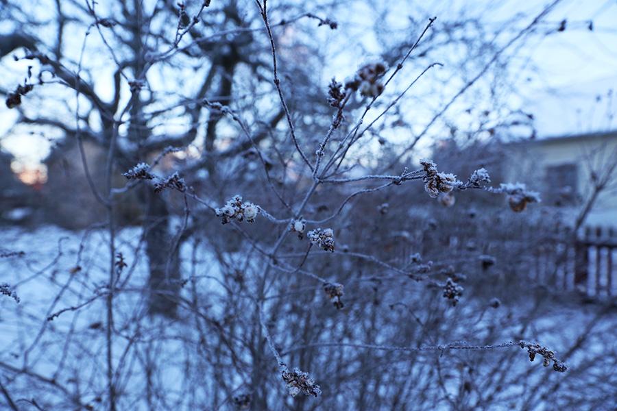Gamla Linköping talvi