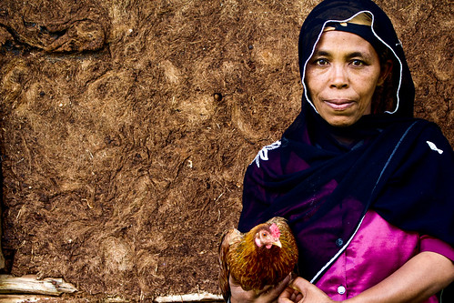 Woman farmer with her chicken, SNNPR, Ethiopia. 15 June 2016 (photo credit: ILRI/ Camille Hanotte)