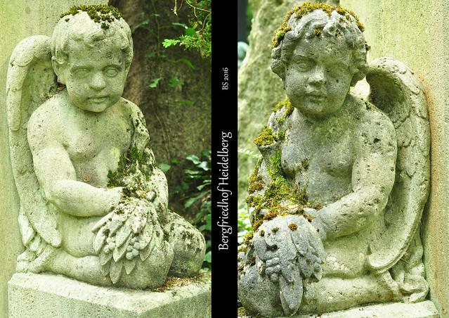"""August 2016. Fotografieren auf dem Friedhof. Nach einem Termin in Heidelberg war noch genug Zeit für einen Abstecher zum menschenleeren, schattigen Bergfriedhof. Hier findet man unter anderem die Gräber des Reichspräsidenten Friedrich Ebert und der Schriftstellerin Hilde Domin. Es gibt einen jüdischen Friedhofsteil mit historischen Grabanlagen, eine Gedenkstätte für an Aids Verstorbene und das so genannte """"Schmetterlingsgrab für stillgeborene Kinder"""" (Frühchen unter 500 Gramm). - Und auch das gibt es: ein Blumengießwasserbecken, in dem putzige (leider nicht fotografierbare) Mini-Salamander leben. - Ein angenehmer, stiller Ort, wenn man dem Trubel der Stadt etwas entfliehen und zur Ruhe kommen möchte. - Anschließend wurde bei der Bio-Vollkornbäckerei Mahlzahn in der Rohrbacher Straße noch leckerer, saftiger Zwetschgenkuchen und eine Mandelecke für zu Hause eingekauft. - Fotos und Collagen: Brigitte Stolle 2016"""