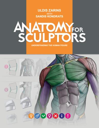 Vector3: Anatomía para escultura