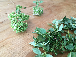 herbs | by Farm Fresh To You -