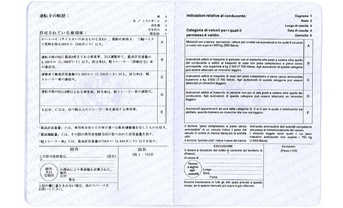 International Permit Sample 5