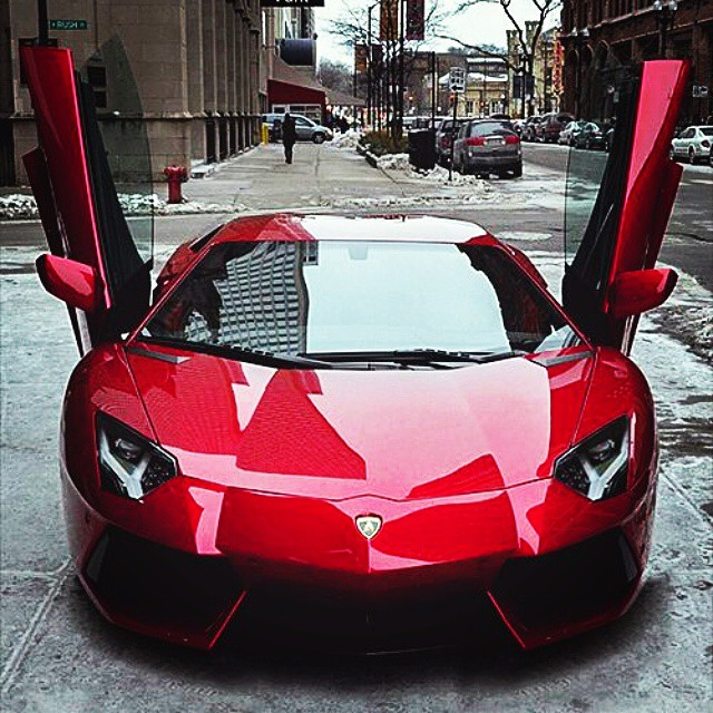 Red Crimson Ox Blood Silver Italian Supercar Lambo