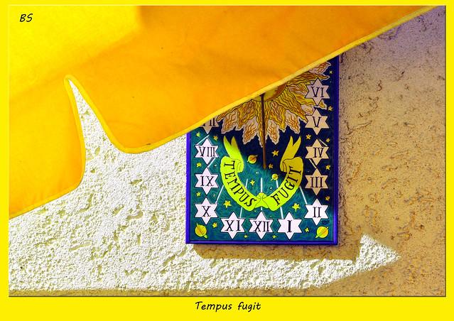 Viel Gelb auf dem Balkon ... Sonne, Sonnenblume, Sonnenuhr, Sonnenschirm ... Tempus fugit - Fotos: Brigitte Stolle 2016