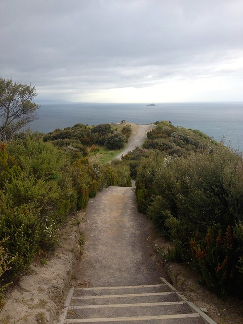 looking North - Mount Maunganui