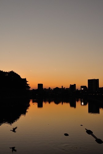 An evening scene of Nagoya castle 2014.11 No.1. | by HIDE@Verdad