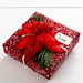 gift wrapped present with red wrapping a poinsettia bow and pine clipping with fake snow paint on a white table